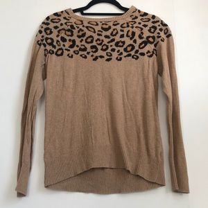 Cheetah Detailed Sweater